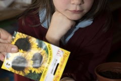 PRIMARY GIRL WITH SUNFLOWER SEEDS